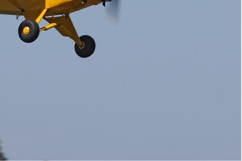 Photo#5898-4-Piper L-18C Super Cub