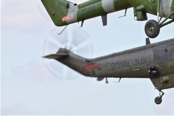 Photo#5209-3-Westland Lynx AH9A