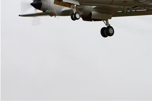 Photo#5290-3-Lockheed P-3C Orion