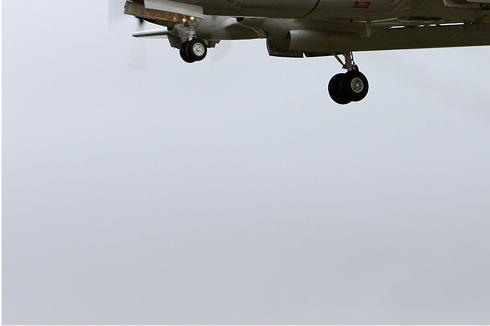 Photo#5291-3-Lockheed P-3C Orion