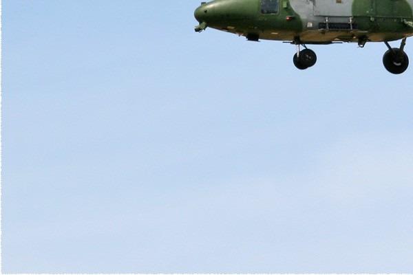 Photo#5365-3-Westland Lynx AH9A