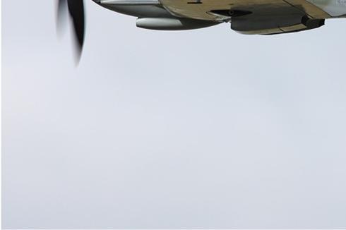 Photo#5383-3-Supermarine Spitfire LF9B