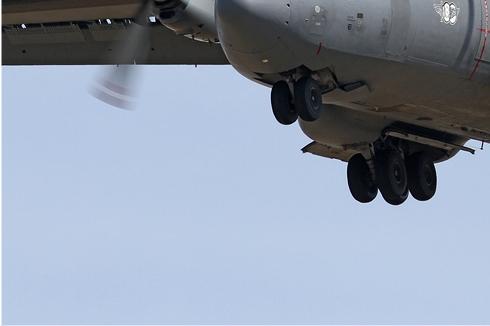 Photo#5664-3-Transall C-160D