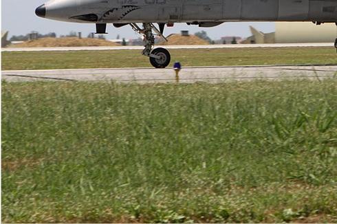 Photo#5674-3-AMX International A-11A