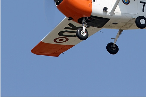 Photo#5720-3-Cessna T-41D Mescalero