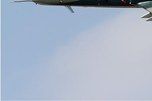 Photo#5748-3-IAR IAR-99C Soim