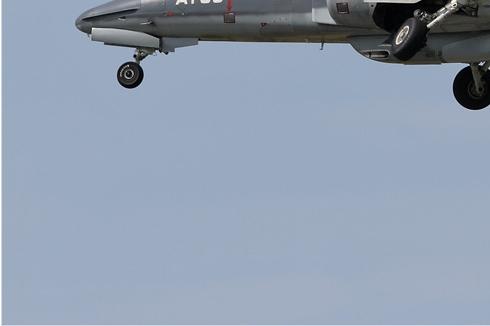 Photo#5945-3-Dassault-Dornier Alphajet 1B+