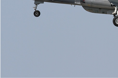 Photo#5946-3-Dassault-Dornier Alphajet 1B+