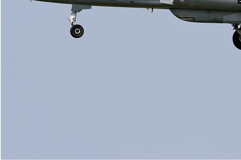 Photo#5950-3-Dassault-Dornier Alphajet 1B+