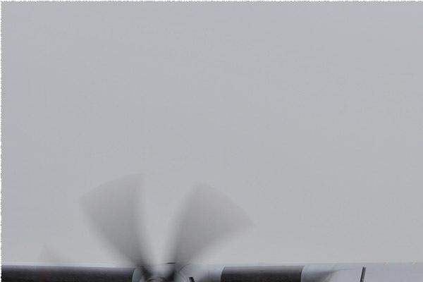 6113a-CASA-C-295M-Pologne-air-force