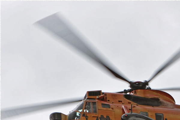 Photo#6131-1-Westland Sea King Mk41