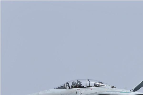 Photo#6871-1-McDonnell Douglas F-15DJ Eagle