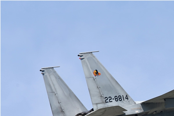 Photo#6924-1-McDonnell Douglas F-15J Eagle