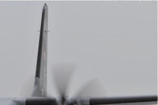 6113b-CASA-C-295M-Pologne-air-force