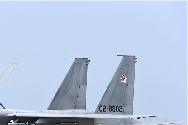Photo#6940-2-McDonnell Douglas F-15J Eagle