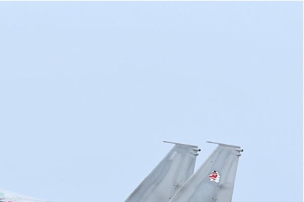 Photo#6951-2-McDonnell Douglas F-15J Eagle