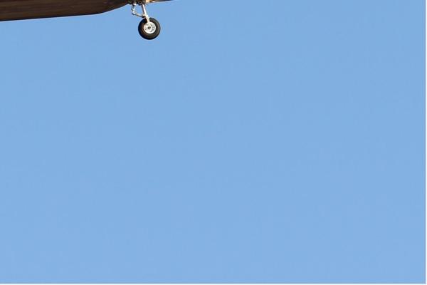 Photo#6543-4-Lockheed F-22A Raptor