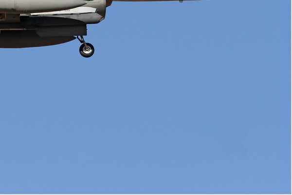 Photo#6636-4-General Dynamics F-16C Fighting Falcon