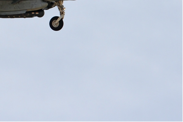 Photo#6647-4-McDonnell Douglas AV-8B Harrier II