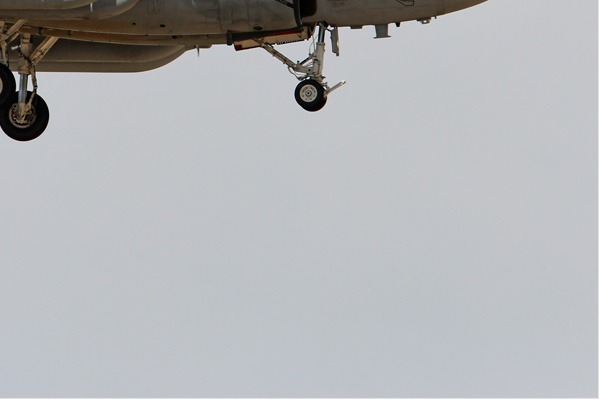 Photo#6661-4-Grumman EA-6B Prowler