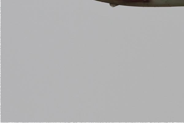 Photo#6270-3-Aero L-29 Delfin