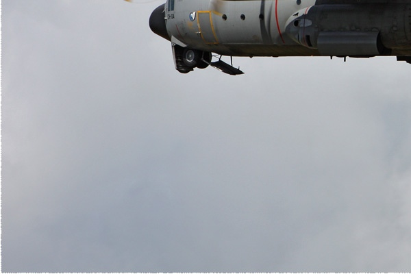 Photo#6317-3-Lockheed C-130H Hercules