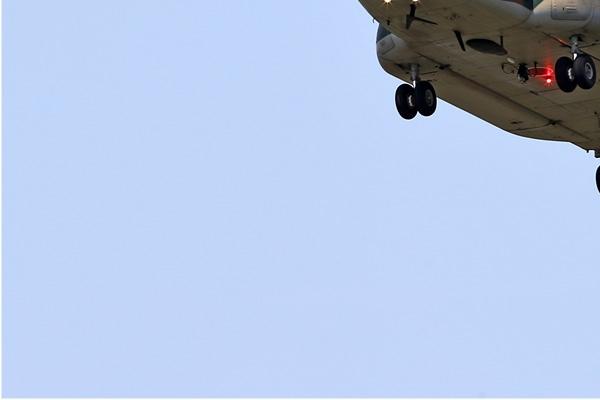 Photo#6779-3-Boeing CH-47J Chinook