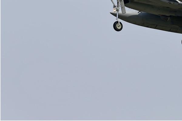 Photo#6870-3-McDonnell Douglas F-15DJ Eagle