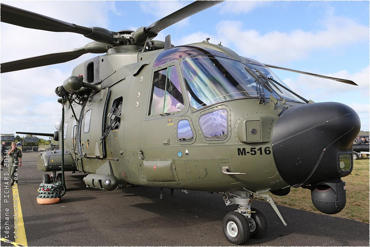 tof#7792_Merlin_de la Force aérienne danoise