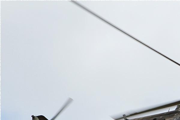 Photo#7806-1-Mil Mi-171Sh