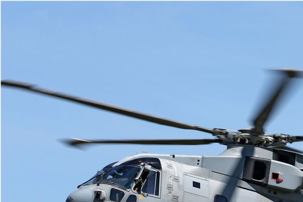 Photo#7888-1-EHI Merlin HM2