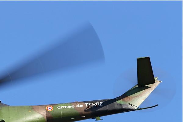 Photo#7366-2-Aerospatiale SA330B Puma