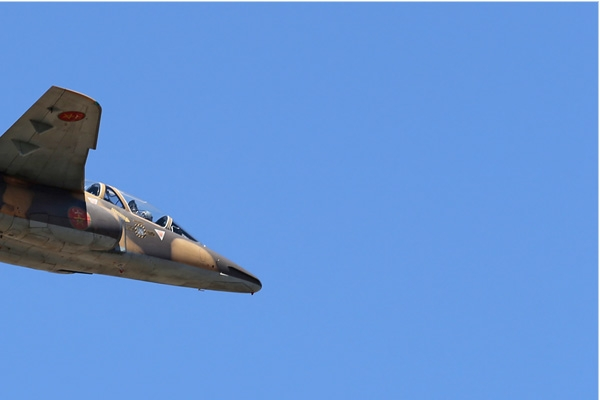 Photo#7536-2-Dassault-Dornier Alphajet H