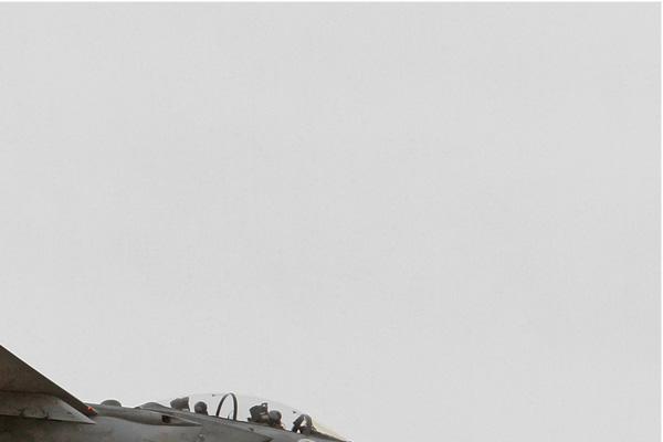 Diapo7590 McDonnell Douglas F-15D Baz 979, Ramat David (ISR) 2014