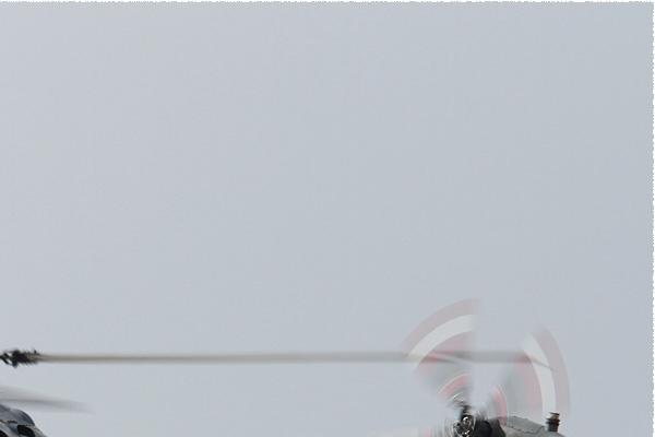 Photo#7981-2-Westland Lynx HMA8SRU