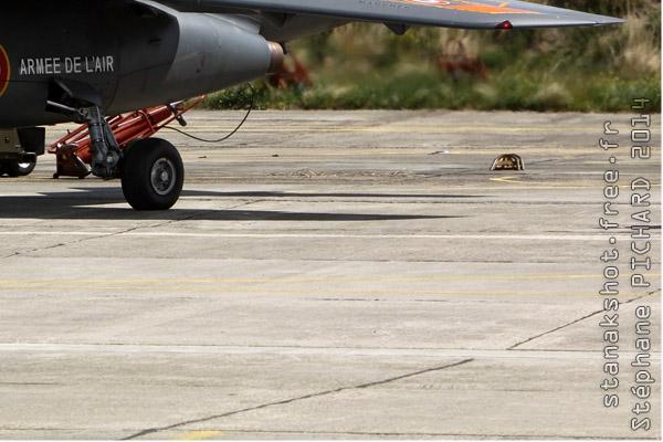 Photo#7443-4-Dassault-Dornier Alphajet E