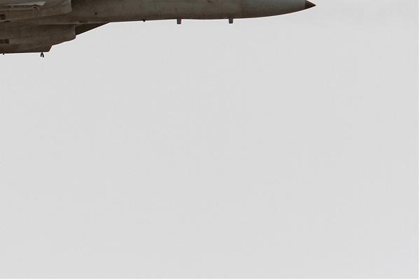 Photo#7589-4-McDonnell Douglas F-15D Baz