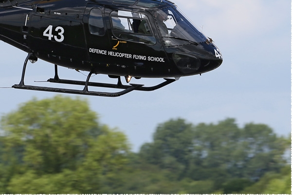 Photo#7912-4-Eurocopter Squirrel HT2
