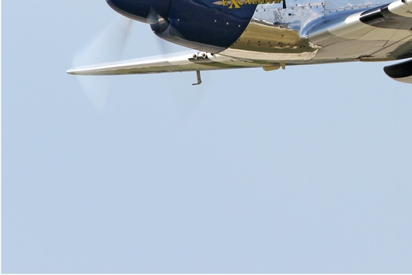 Photo#7308-3-North American P-51D Mustang