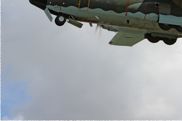 Photo#7838-3-Lockheed C-130H Hercules