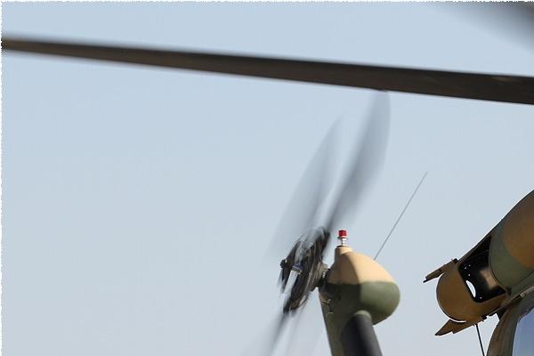 Photo#8924-1-Sikorsky UH-60A Black Hawk