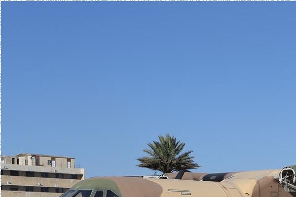 8931a-CASA-C-295M-Jordanie-air-force