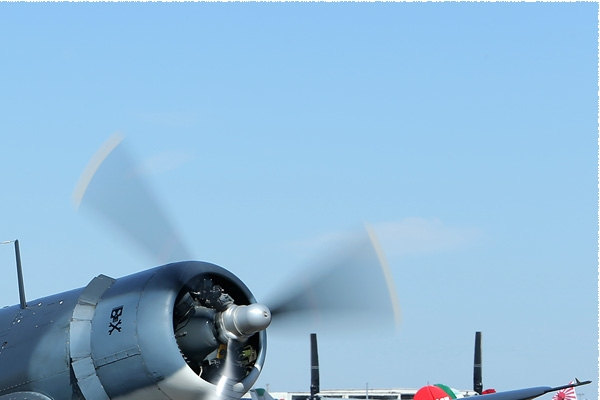 Photo#8045-2-Vought FG-1D Corsair