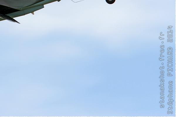Photo#8059-4-Curtiss P-40N Warhawk