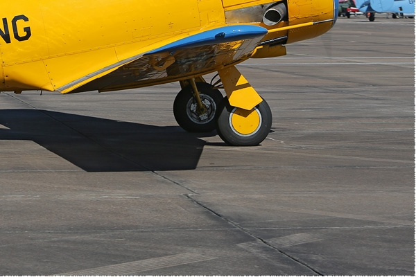 Photo#8078-4-North American SNJ-5 Texan