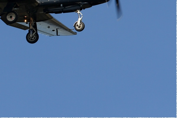 Photo#8211-4-Raytheon T-6A Texan II