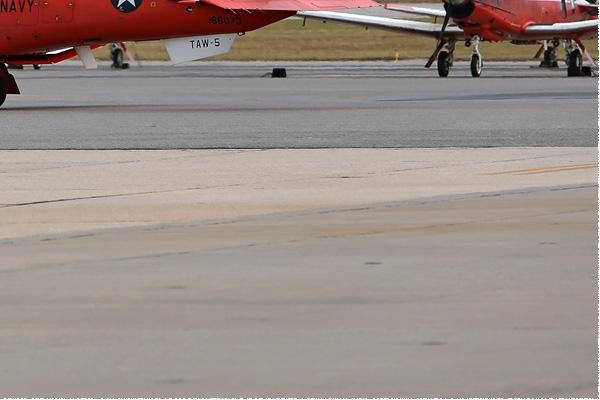 Photo#8256-4-Raytheon T-6B Texan II