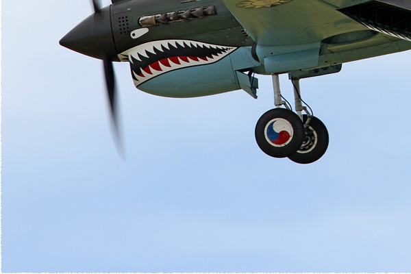 Photo#8059-3-Curtiss P-40N Warhawk