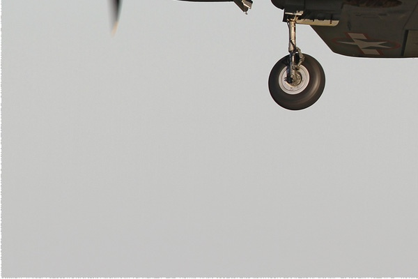 Photo#8061-3-Curtiss P-40K Warhawk