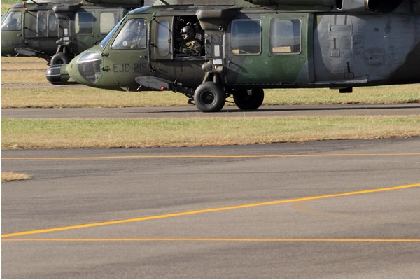 Photo#8603-3-Sikorsky UH-60L Black Hawk